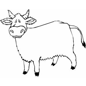 Confused Cow Coloring Sheet