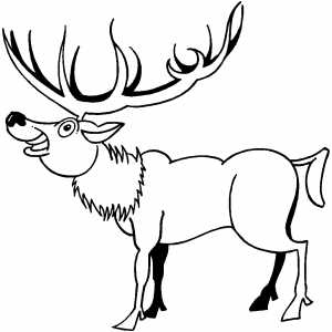 Deer With Big Horns Coloring Sheet