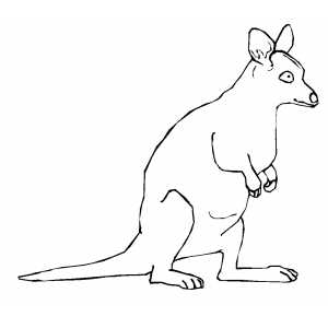 Kangaroo Kid Coloring Sheet