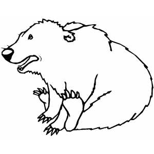 Little Playing Bear Coloring Sheet