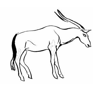 Severe Antelope Coloring Sheet