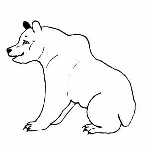 Sitting Polar Bear Coloring Sheet