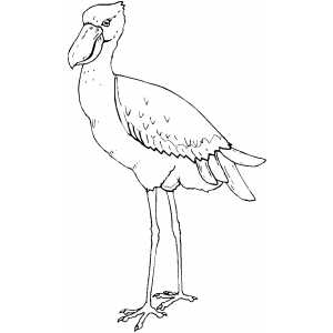 Bird With Long Legs Coloring Sheet