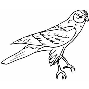 Disappointed Bird Coloring Sheet