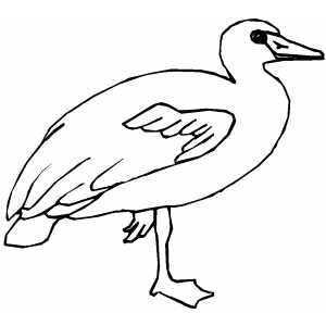 Goose On One Leg Coloring Sheet
