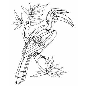 Parrot on Tree Coloring Sheet