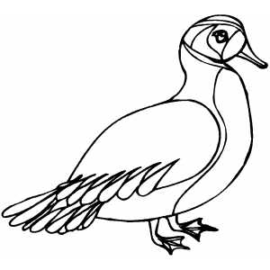 Sad Duck Coloring Sheet