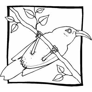 Sitting Bird In Frame Coloring Sheet