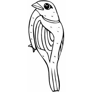 Sparrow Coloring Sheet