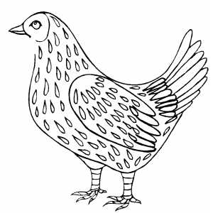Speckled Chicken Coloring Sheet