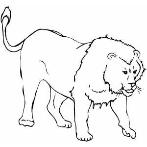 Angry Lion Coloring Sheet