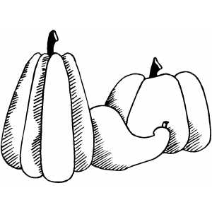 Pumpkin And Gourd Coloring Sheet