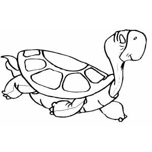 Swimming Turtle Coloring Sheet
