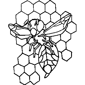 Bee in Hive Coloring Sheet