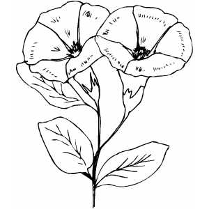 Couple Bell Flowers Coloring Sheet