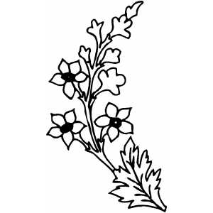 Flowers13 Coloring Sheet