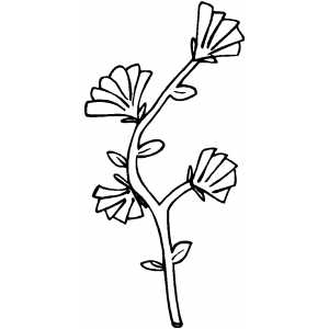 Flowers14 Coloring Sheet