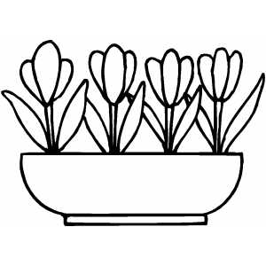 Flowers17 Coloring Sheet