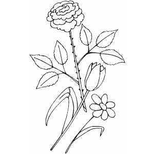 Flowers18 Coloring Sheet