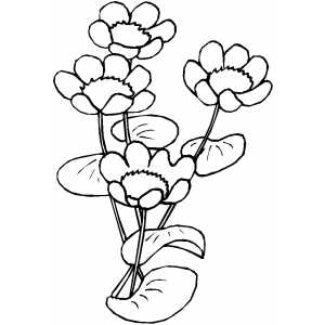 Flowers43 Coloring Sheet
