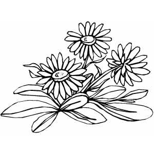 Flowers46 Coloring Sheet