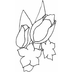 Flowers Ready To Blossom Coloring Sheet