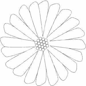 Multiple Petals Flower Coloring Sheet