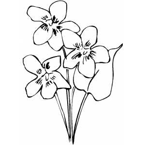 Three Flowers And One Leaf Coloring Sheet