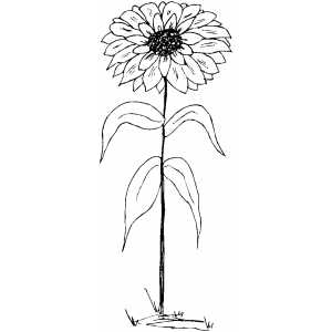 Flower In The Ground Coloring Sheet