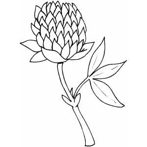Flowers20 Coloring Sheet