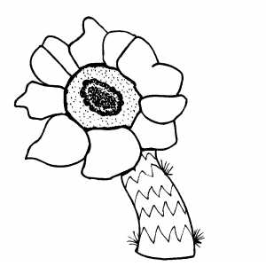 Flowers29 Coloring Sheet