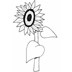 Flowers30 Coloring Sheet