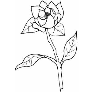 Flowers33 Coloring Sheet