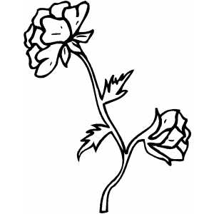 Flowers6 Coloring Sheet