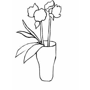 Two Flowers In Vase Coloring Sheet