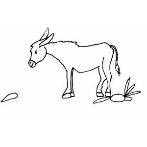 Donkey Walking To Carrot Coloring Sheet