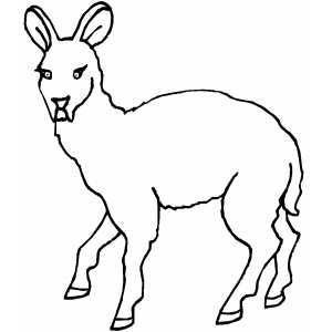 Scared Deer Coloring Sheet