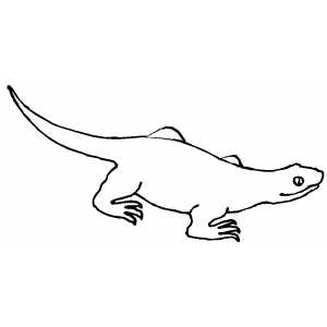 Walking Lizard Coloring Sheet